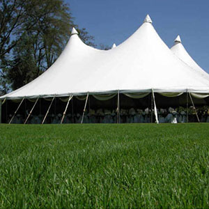 Peg-and-Pole-Tents-3